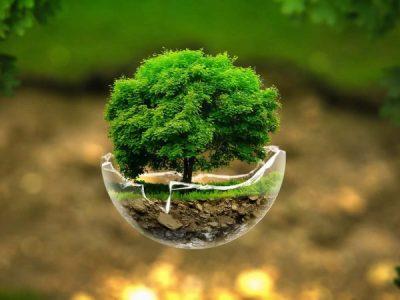 Zelená domácnostiam II pokračuje aj v roku 2020 už vo februári